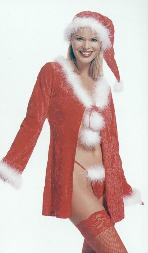 Sexy Female Santa.jpg